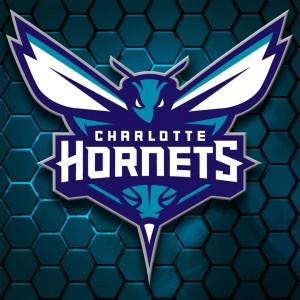 """Il 21 dicembre 2013 viene presentato a Charlotte, alla Tme Warner Cable Arena (dove giocavano i Bobcats e ora giocano gli Hornets) un video in cui si mostrano alcuni nuovi loghi dei Calabroni. Gli Hornets infatti andranno a sostituire i Bobcats nel 2014. Il nickname fu scelto dal primo proprietario """"Bob"""" Johnson, il quale ci teneva a mettere qualcosa di suo nel nome della franchigia. La scelta fu detrminata anche in base al fatto che il nickname Hornets non era disponibile poiché Shinn lo aveva trascinato con se a New Orleans. Approfittando della decisione del neoproprietario della franchigia della Louisiana di cambiare nome al team di New Orleans, un piccolo gruppo di tifosi aveva accarezzato l'idea di riportare il soprannome Calabroni a casa, cosa poi avvenuta."""