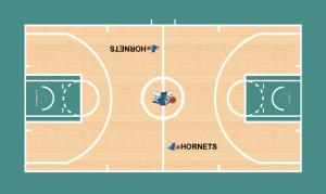 Parquet Hornets 1989-90.