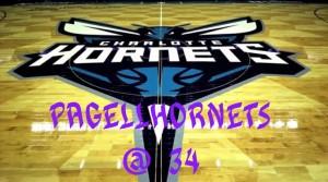 hornets-court7