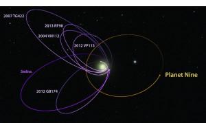 Un po' Off Topic, comunque le anomale traiettorie degli oggetti che farebbero ipotizzare agli scienziati/ricercatori californiani l'esistenza del Planet Nine.